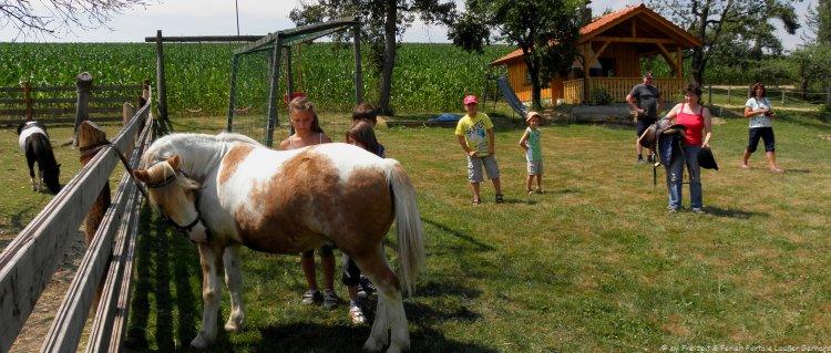 Reiterferien in Bayern am Ponyhof in Bayern