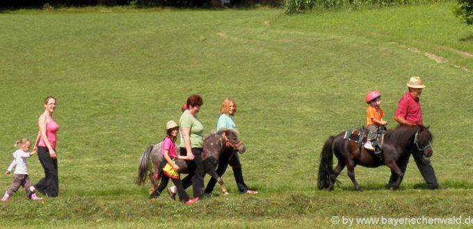 Reiterferien für Erwachsene in Bayern